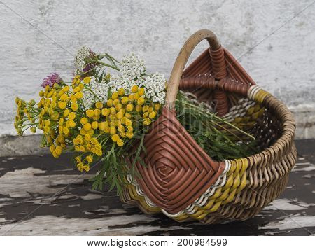 yellow and white flowers in wicker basket on peeling wooden bench vintage still life