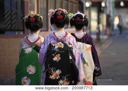 Back view of three geisha going for their appointment at dusk in Kyoto, Japan.