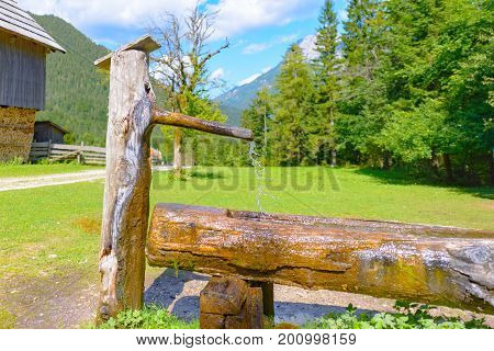 Traditional Wooden water trough, water well with trough in European Alps, Robanov kot, Slovenia, a farm shed in background
