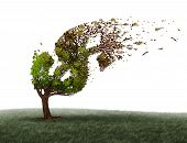 Economic turbulence and financial trouble and money adversity or economy crisis concept as a tree being blown by the wind and damaged or destroyed by the force of a storm as a business crisis metaphor with 3D illustration elements. poster