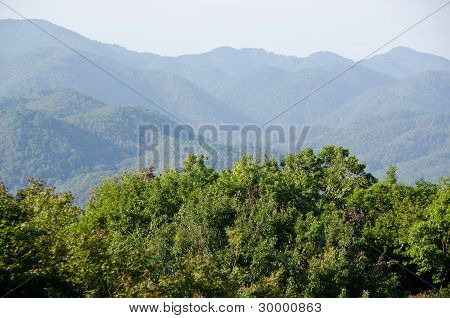 Mountain Landscape Around Arashiyama