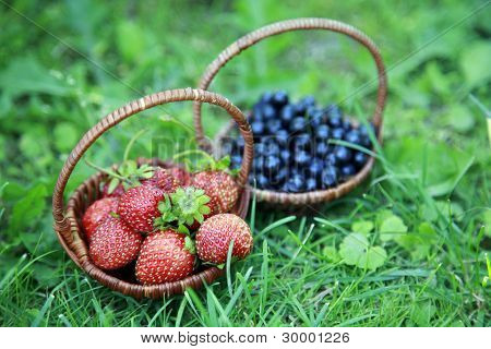 Strawberries And Blueberries On The Green Grass