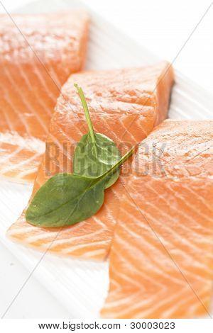 Fresh Salmon On White Background.