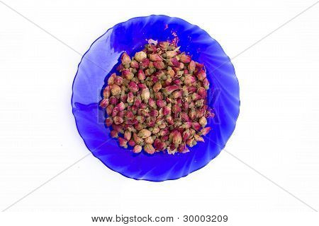 buds in plate