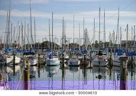 Moored Yachts In Harbour