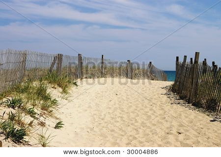 Sandy Coastal Walkway