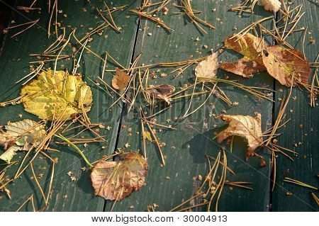 Autum Leaves On Wooden Surface