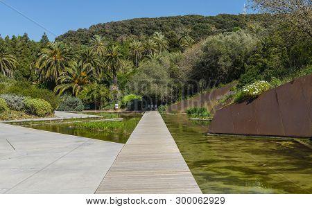 Botanical garden in Montjuic park outdoor, Barcelona. poster