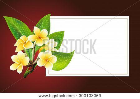 Golden Frangipani Or Plumeria Flowers With Leaves. Vector Invitation Postcard
