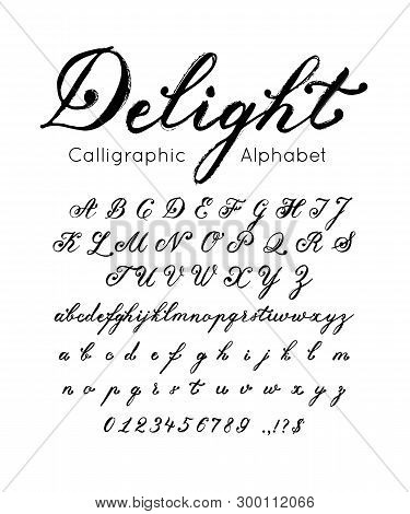 Vector Elegant Font And Alphabet. Set Of Cursive Letters And Numbers. Brush Type