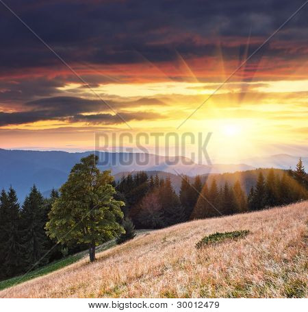 Landscape in the mountains with a sunset. Ukraine, the Carpathian mountains