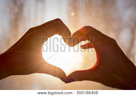 Female Hands In The Form Of Heart Against The Window Pass Sun Beams. Hands In Shape Of Love Heart Si