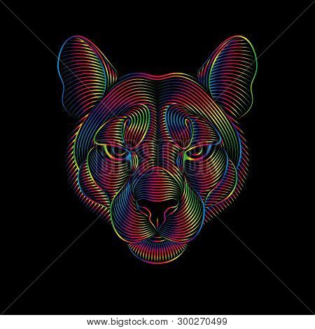 Engraving Of Stylized Puma On Black Background In Spectrum Colors