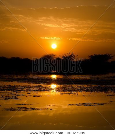 Sunset in the wetlands of Keoladeo National Park or Keoladeo Ghana National Park, a World Heritage Site, formerly known as the Bharatpur Bird Sanctuary in Bharatpur, Rajasthan, India poster