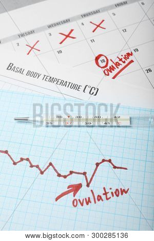 Ovulation Cycle In Women. Graph Of Basal Temperature. Favorable Time For Conceiving Child.