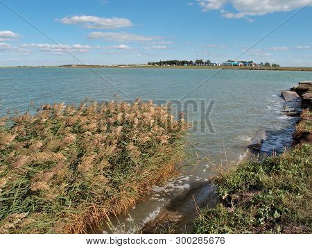 View Of The Lake Chany Novosibirsk Region Siberia Russia