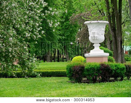 Beautiful Young Greens In The City Park. Gomel, Belarus.