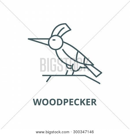 Woodpecker Vector Line Icon, Linear Concept, Outline Sign, Symbol