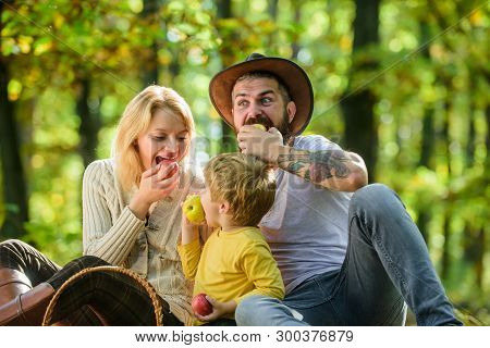 Family Weekend. Mother Father And Little Son Sit Forest Picnic. Good Day For Spring Picnic In Nature