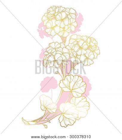 Vector Round Wedding Bouquet With Outline Geranium Or Cranesbills Flower Bunch And Ornate Leaf In Go