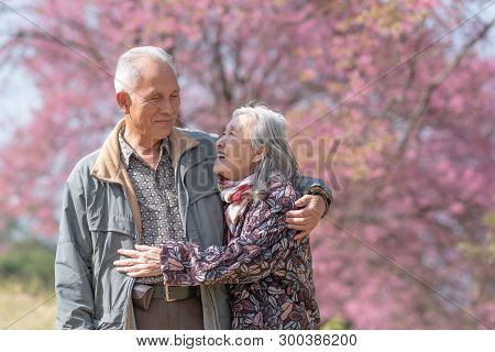 Happy Old Couple Smiling In A Park.mature Couple With Cherry Blossom Sakura Tree.seniors Lover Famil