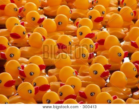 Rubber Duck Convention