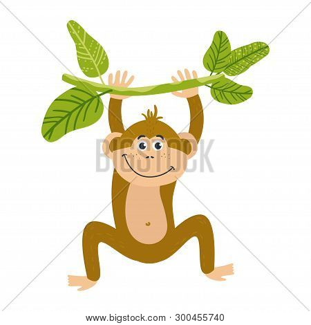 Vector Cute African Animal. Monkey. Funny Character For Kids.