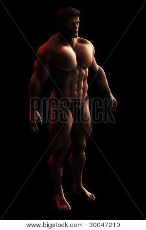 Male Bodylbuilder Illustration