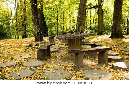 bench and table