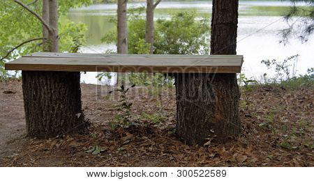 Wooden Bench On Tree Logs In Forest