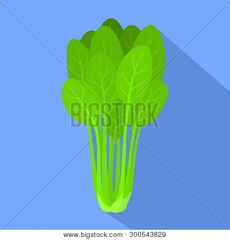 Spinach plant icon. Flat illustration of spinach plant icon for web design poster