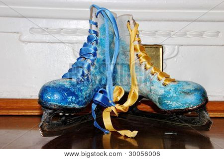 Skates Painted Under Winter Subjects