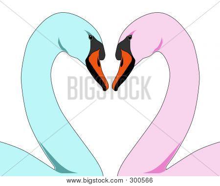 Coloured Love Swans