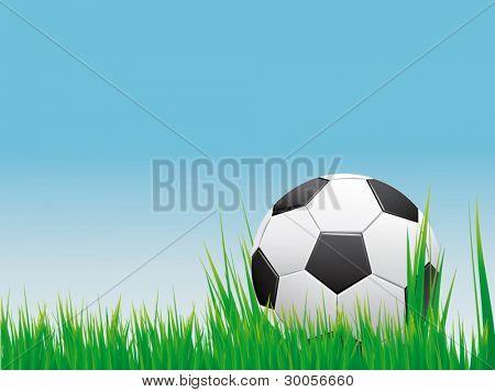 Soccer banner. Vector banner of soccer ball on green grass.