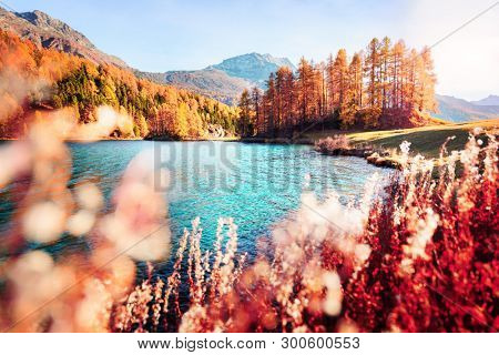 Picturesque view on Silvaplana lake in Swiss Alps, Switzerland. Landscape photography