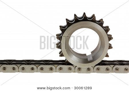 Gear On Top Of The Chain