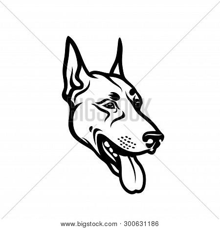 Dobermann Dog Face - Isolated Outlined Vector Illustration - Vector