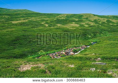 Mountain Creek In Green Valley Among Rich Vegetation Of Highland Under Blue Clean Sky In Sunny Day.