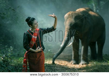 Beautiful Young Thai Woman Northeast Style Is Enjoy Dancing And Playing With Elephant In The Jungle