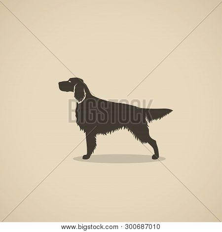 Setter Dog - Silhouette Of The Irish Or England Setter - Vector Illustration