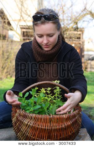 Woman With Herbs
