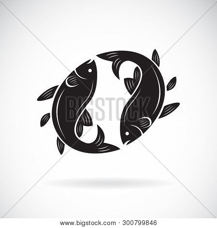 Vector Of Two Fish Design On White Background. Aquatic Animal. Fish Icon. Easy Editable Layered Vect