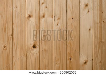 White Pine Wood Surface. Grain Timber Texture Background. Wood Texture Background, Oak Wood Wall Fen