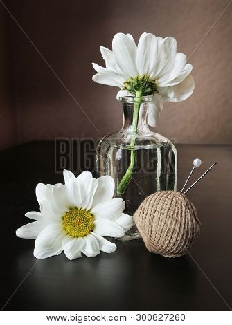 Still Life With Thread, Pin, Sewing Needle And Two White Daisy Flowers In The Small Vintage Glass Bo