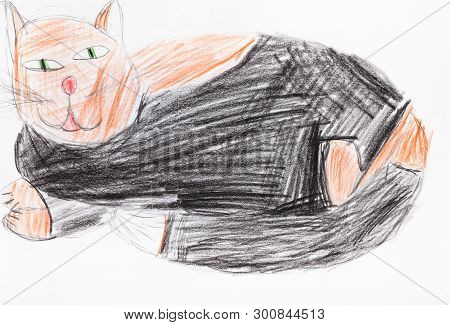 Large Fat Black And Brown Cat Hand-drawn By Colour Pencils On White Paper