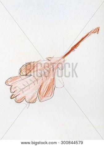Fallen Oak Leaf Hand-drawn By Colour Pencils On White Paper