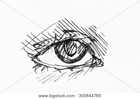 Sketch Of Human Eye Hand-drawn By Black Ink On White Paper