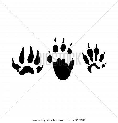 Fitchew Footprint. Black Silhouette Design. Vector Illustration.