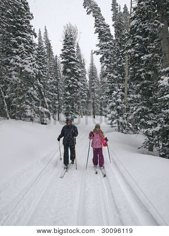 Skiers In The Forest