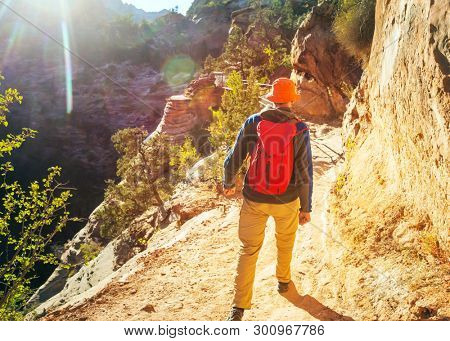 Hike in Zion National Park. Man walk on the trail  in Zion National park,Utah. Back turned no face visible.